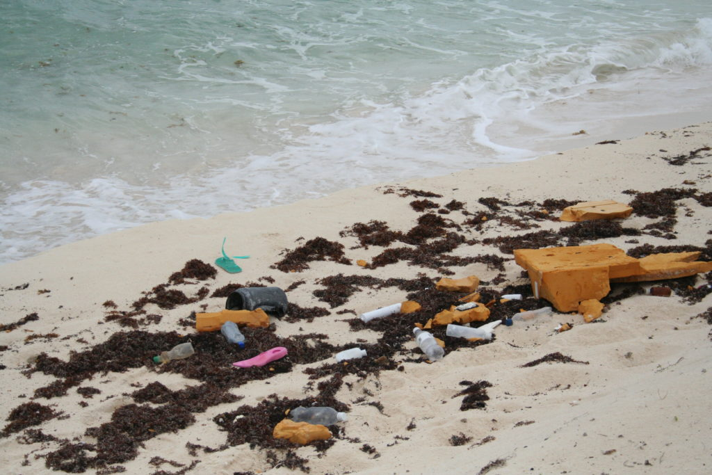 Trash on the beach in Cozumel, Mexico