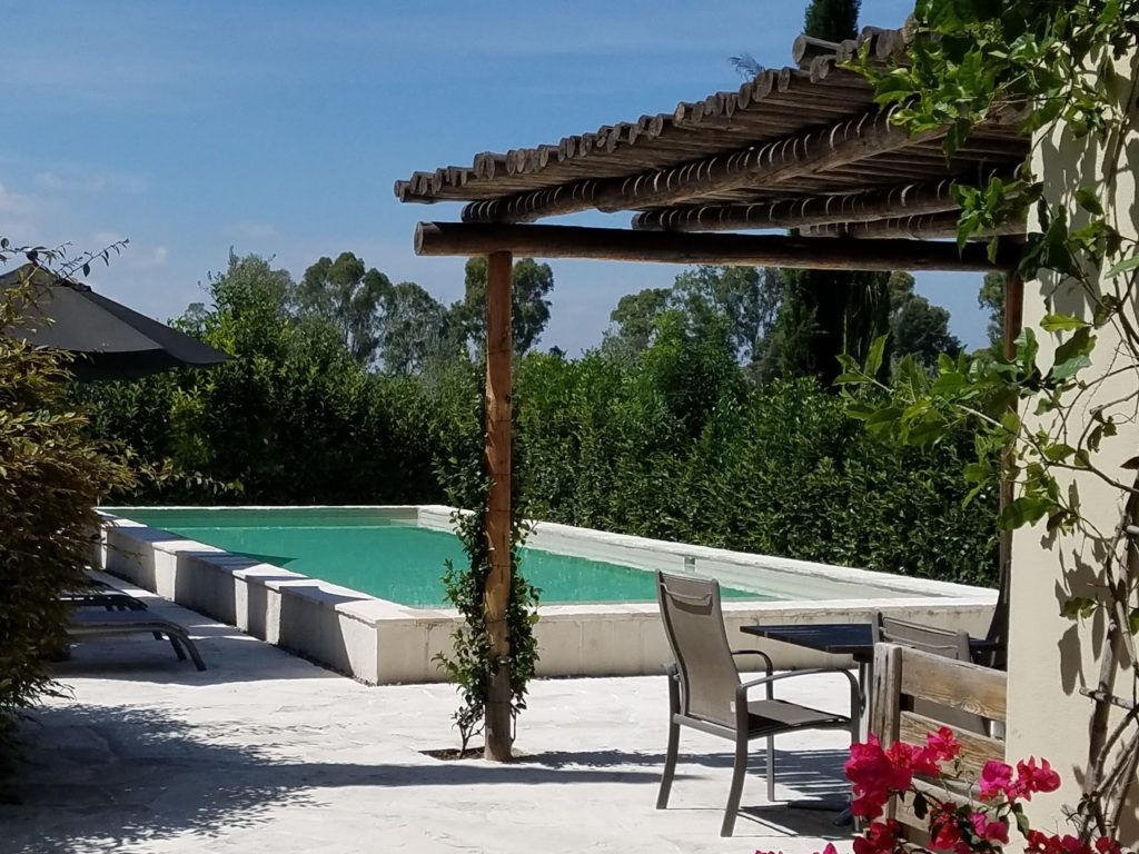 The Pool at La Santisma Trinidad Winery, Mexico