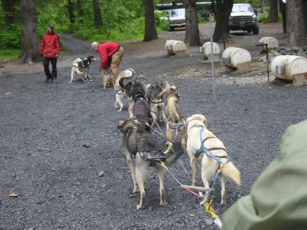 Ididaride Sled Dog Tours, Seward, Alaska